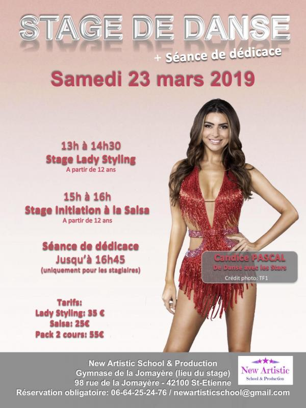 Affiche stage candice 6