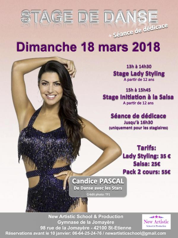 Maquette affiche stage candice de finitive